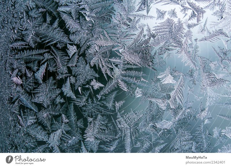 Ice patterns on winter Nature Christmas & Advent Blue Beautiful Winter Natural Snow Bright Weather Fresh Climate New Frost Seasons Beauty Photography Frozen