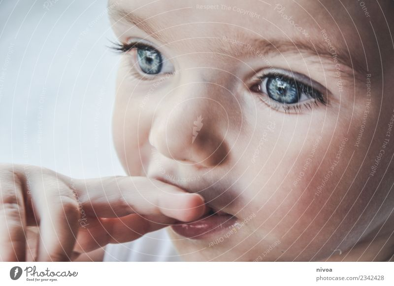 Child's face in the pose of a thinker Beautiful Face Senses Parenting Human being Toddler Boy (child) Infancy Eyes Nose Fingers 1 1 - 3 years Observe Touch