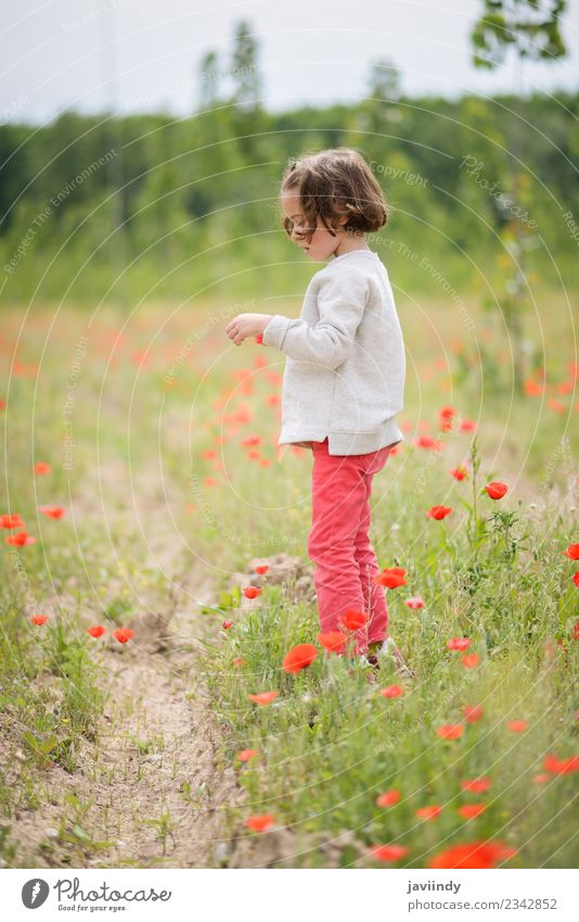 Cute little girl having fun in a poppy field Joy Happy Beautiful Life Playing Child Human being Baby Girl Woman Adults Infancy 1 3 - 8 years Nature Flower Grass