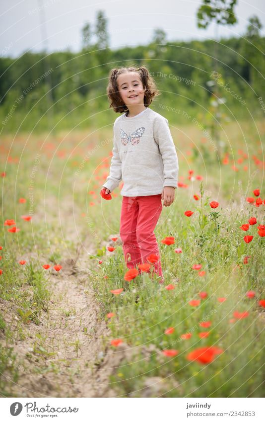 Little girl with four years old having fun in a poppy field Joy Happy Beautiful Life Playing Child Human being Girl Woman Adults Infancy 1 3 - 8 years Nature