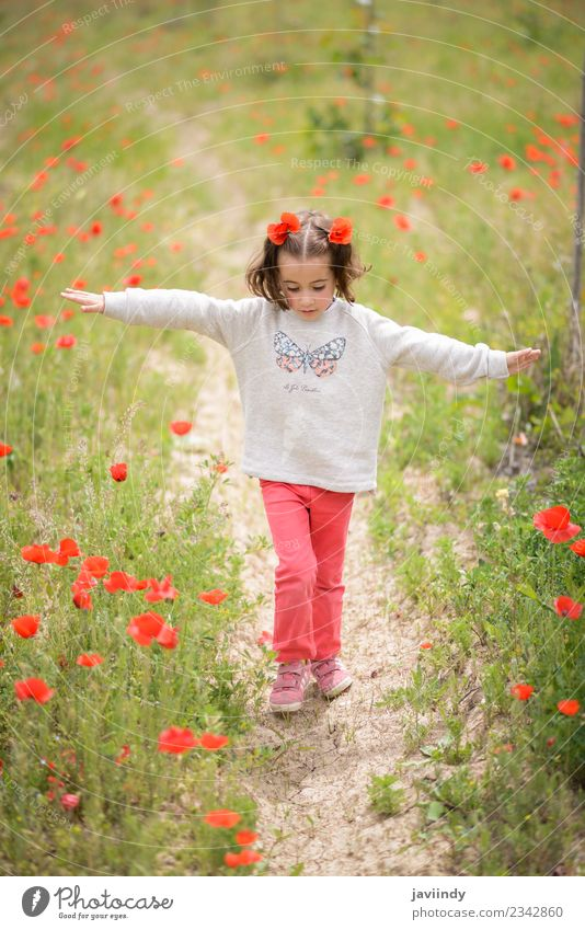 Cute little girl having fun in a poppy field Woman Child Human being Nature Beautiful White Flower Joy Girl Adults Life Meadow Grass Laughter Small Happy