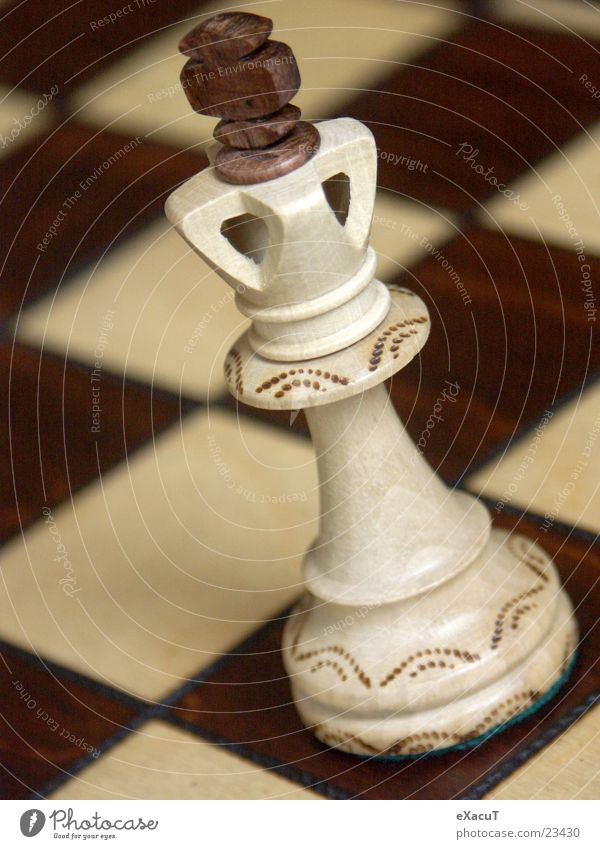 King of all Kings! Wood Leisure and hobbies Playing Pattern Checkered Logic Things Chessboard Wooden board Think Macro (Extreme close-up) Crazy Chess piece