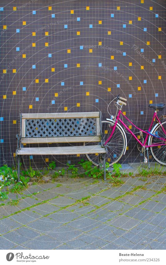 Blue Green Summer Calm Yellow Relaxation Wall (building) Emotions Gray Grass Wall (barrier) Moody Bicycle Pink Concrete Retro