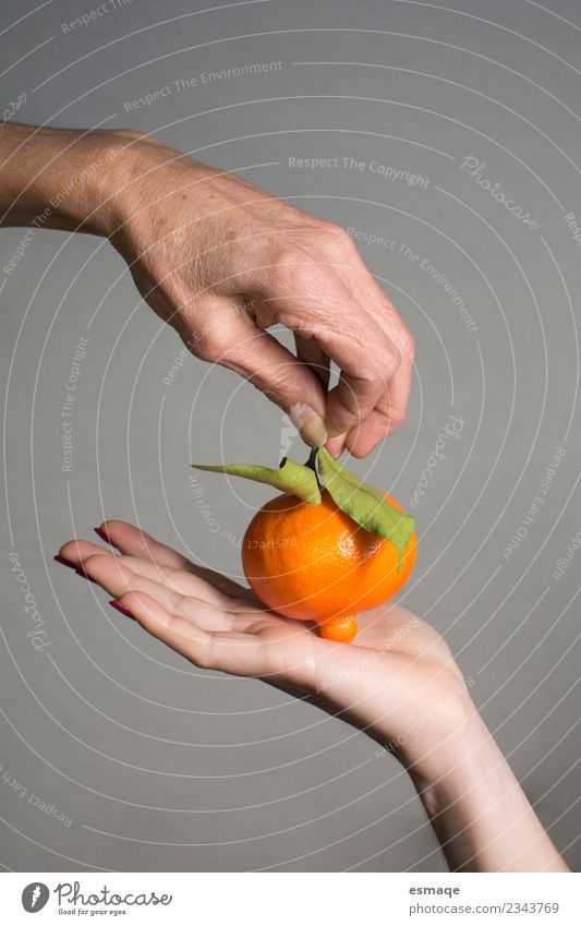 hands holding a natural orange Food Fruit Orange Nutrition Buffet Brunch Organic produce Lifestyle Joy Health care Hand 2 Human being Diet Exceptional Authentic
