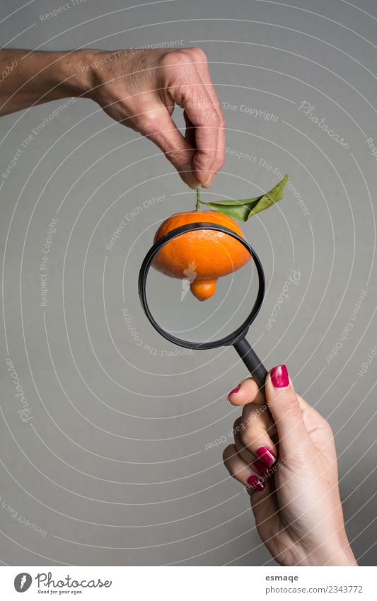 Tangerine observed with magnifying glass Food Fruit Orange Nutrition Eating Organic produce Vegetarian diet Diet Magnifying glass Magnifying effect Observe