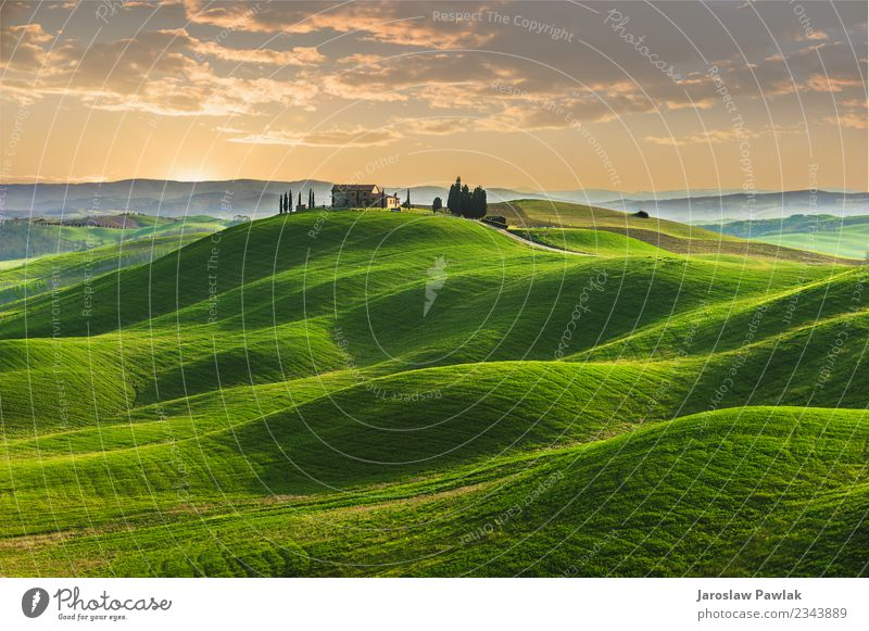 Spring in the fields of Tuscany in the sunset Beautiful Summer House (Residential Structure) Nature Landscape Plant Sky Clouds Tree Grass Park Meadow Hill Blue