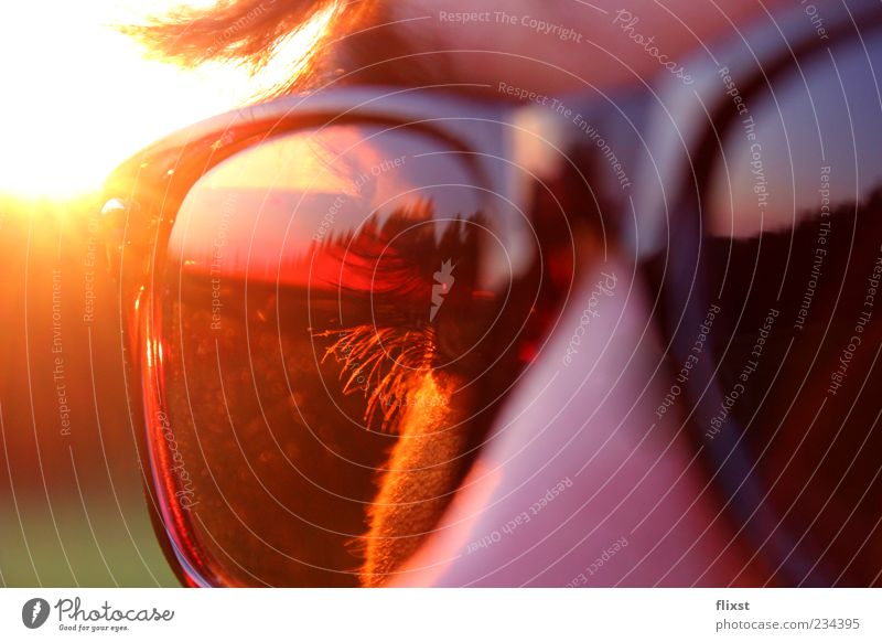 Sunglasses in use Hair and hairstyles Eyes 1 Human being Contentment Cool (slang) Eyelash Colour photo Exterior shot Twilight Reflection Back-light