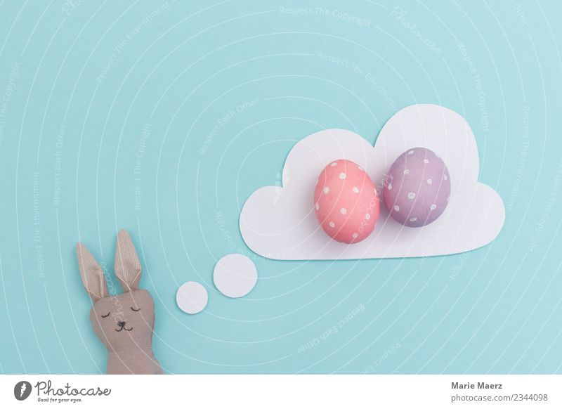 Blue Colour Relaxation Joy Funny Pink Leisure and hobbies Contentment Dream Happiness Sleep Planning Easter Painting (action, work) Fatigue Anticipation