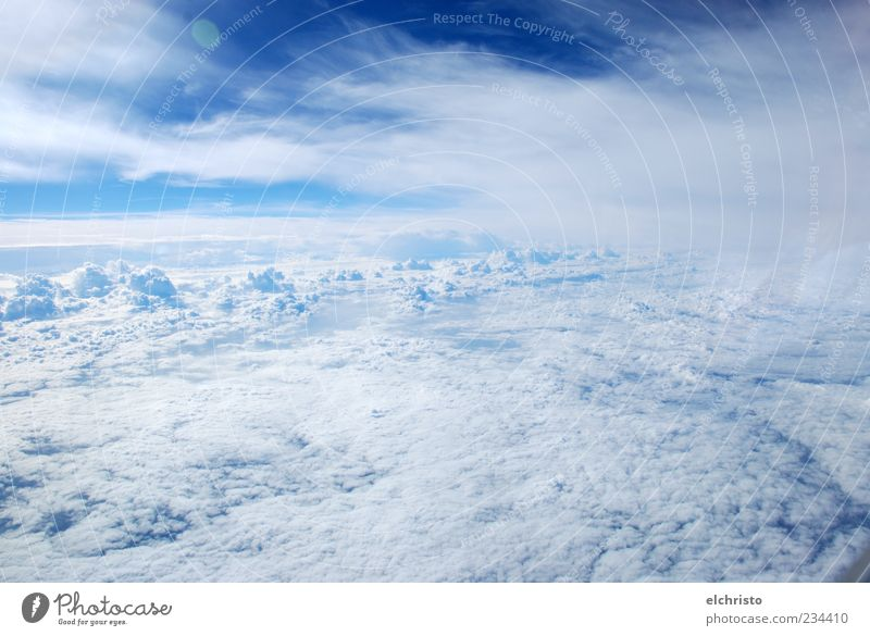 Sky White Clouds Far-off places Above Freedom Air Aviation Beautiful weather Fantastic Blue sky Aerial photograph Cloud cover View from the airplane