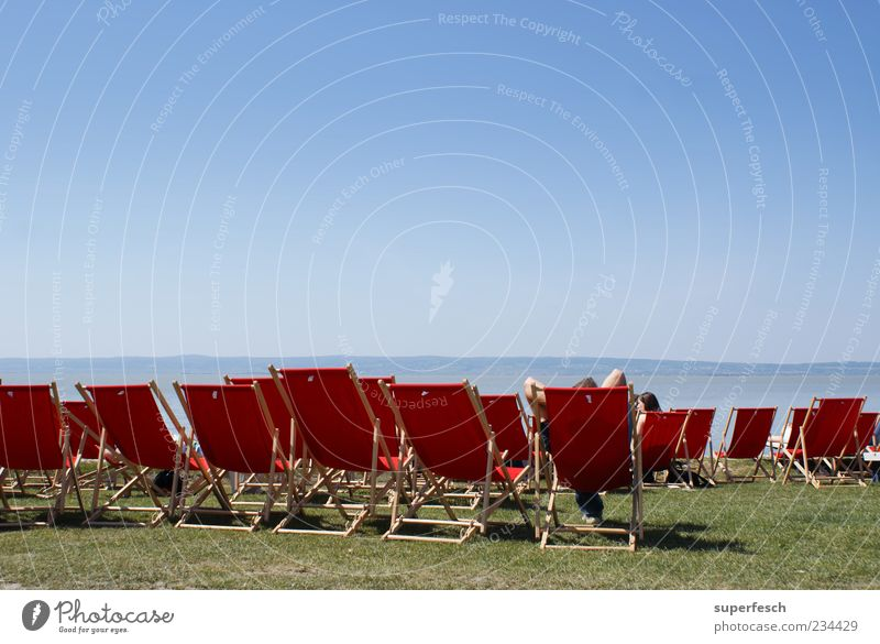 Place in the sun Harmonious Well-being Relaxation Summer Summer vacation Sun Sunbathing Cloudless sky Beautiful weather Lakeside Beach Lake Neusiedl Sit Hot