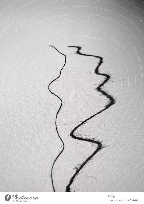 lost one's thread Line Gray Black White Sewing thread String Shadow Shadow play Curve Black & white photo Interior shot Pattern Structures and shapes Soft Thin