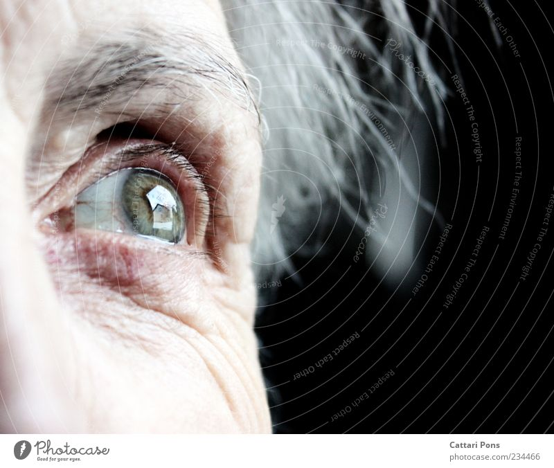 You always stay in your heart! Female senior Woman Senior citizen Eyes 1 Human being Gray-haired White-haired Think Looking Old Infinity Near Green Remember