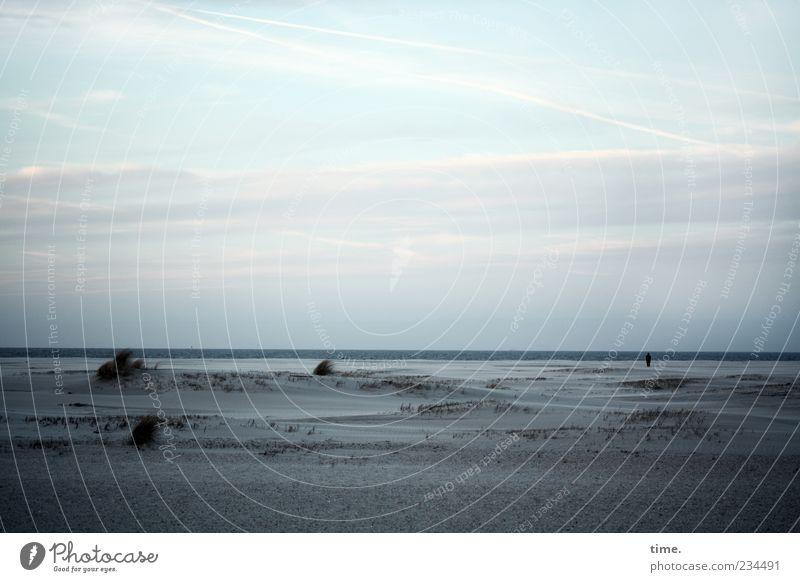 Human being Sky Blue Water Ocean Beach Clouds Loneliness Calm Far-off places Dark Coast Horizon North Sea Creepy Beach dune