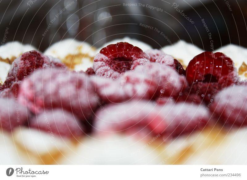 Fruit Food Near Frozen Delicious Cake Gateau Dessert Fruity Raspberry Food photograph Nutrition Deep frozen Cream gateau