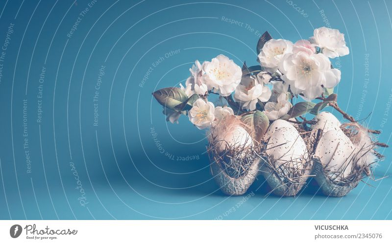 Blue Easter background with eggs and white flowers Style Design Decoration Spring Leaf Blossom Tradition Background picture Symbols and metaphors Still Life Egg