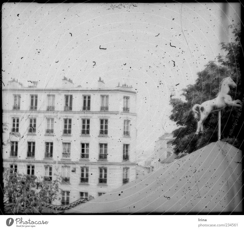 Old Architecture Exceptional Facade Paris Analog Nostalgia Tourist Attraction Partially visible Capital city Famousness Carousel Old building Dusty Fluff Black & white photo