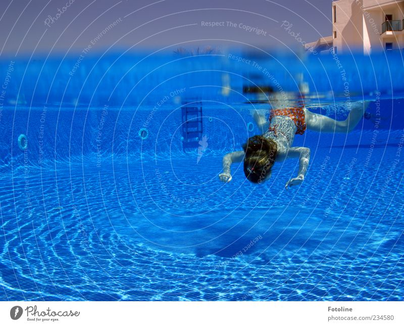 diver freulein Human being Child Girl Infancy Head Hair and hairstyles Arm Hand Bright Wet Blue Summer Swimming pool Dive Underwater photo