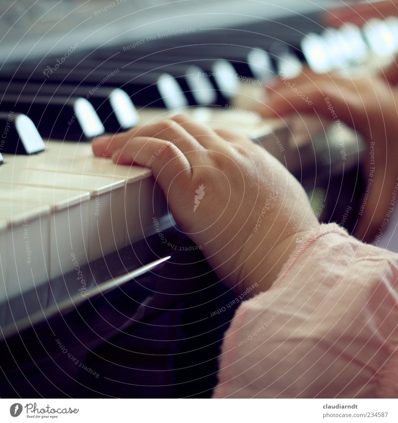 Human being Child Hand White Girl Joy Black Playing Small Music Infancy Pink Fingers Toddler Discover Keyboard