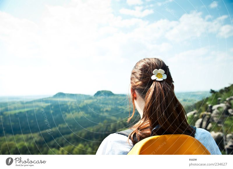 Human being Sky Nature Youth (Young adults) Vacation & Travel Sun Clouds Adults Forest Far-off places Environment Landscape Feminine Mountain Freedom Hair and hairstyles