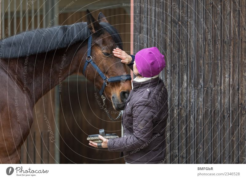 Woman Human being Animal Joy Adults Lifestyle Feminine Happy Freedom Friendship Leisure and hobbies Contentment Power Cleaning Painting (action, work) Horse