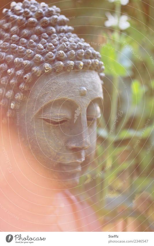 Meditation in the garden Harmonious Calm Garden Beautiful Green Orange Moody Attentive Self Control Wisdom Belief Mood lighting Serene Religion and faith Buddha