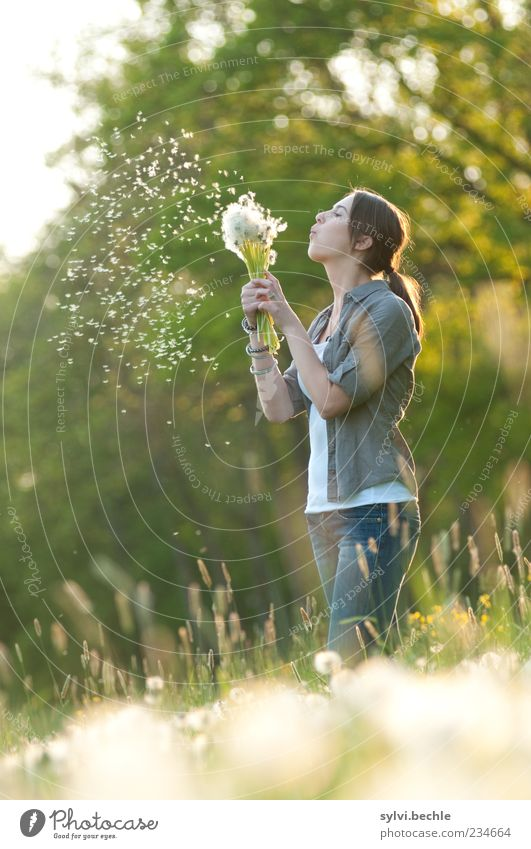Human being Nature Youth (Young adults) White Green Tree Plant Flower Joy Environment Life Meadow Feminine Freedom Movement Grass