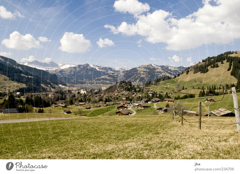 Saanenland Summer Mountain Nature Landscape Clouds Sunlight Spring Beautiful weather Grass Meadow Hill Alps Gstaad Ski resort Home country Switzerland Village