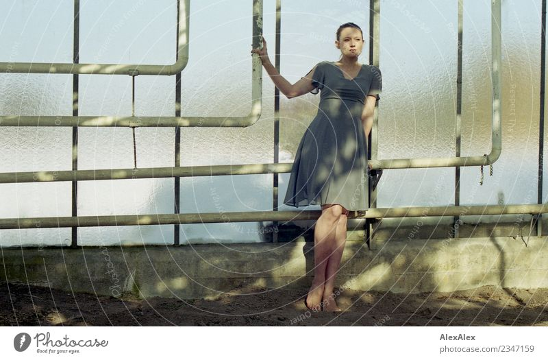 Young woman in an empty greenhouse Elegant Beautiful Well-being Senses Greenhouse Iron-pipe Youth (Young adults) Body 18 - 30 years Adults Sky Beautiful weather