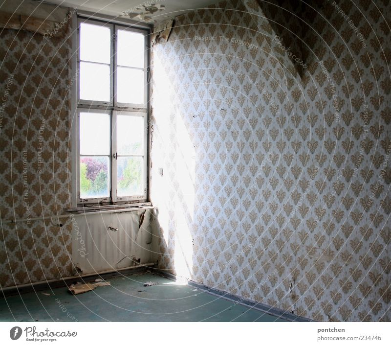 Empty space. Patterned wallpaper and broken windows in a dilapidated old building. Lost place property sharks Flat (apartment) Redecorate