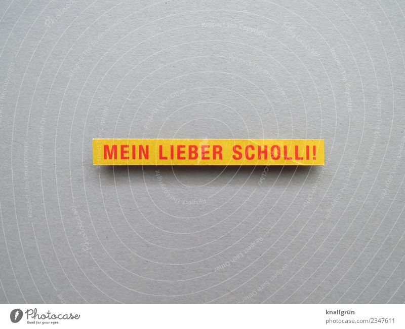 MY DEAR SCHOLLI! Characters Signs and labeling Communicate Yellow Red Emotions Moody Enthusiasm Surprise Aggravation Crisis Exclamation Colloquial speech