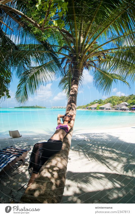 On a palm tree joy life happy moments love sun amazing happiness maldives blue water sand white gorgeous