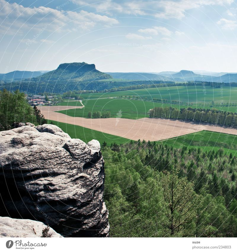 Ausgugg Far-off places Freedom Mountain Environment Nature Landscape Sky Cloudless sky Climate Tree Forest Rock Exceptional Green Elbsandstone mountains