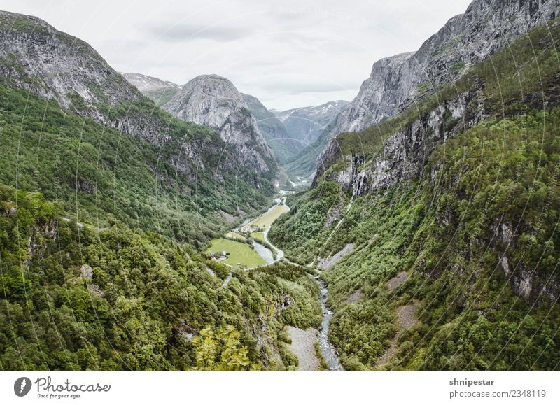 View from Stalheim Hotel in Norway Vacation & Travel Tourism Trip Far-off places Freedom Expedition Summer Nature Landscape Plant Elements Forest Rock Mountain