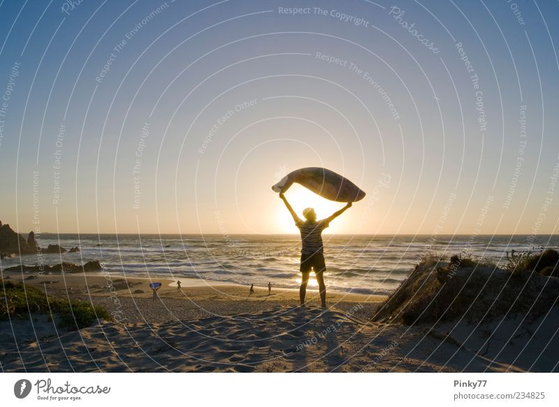 a summerday evening in the north of Sardinia Human being Sky Man Nature Sun Vacation & Travel Ocean Summer Beach Joy Adults Relaxation Freedom Sand Coast