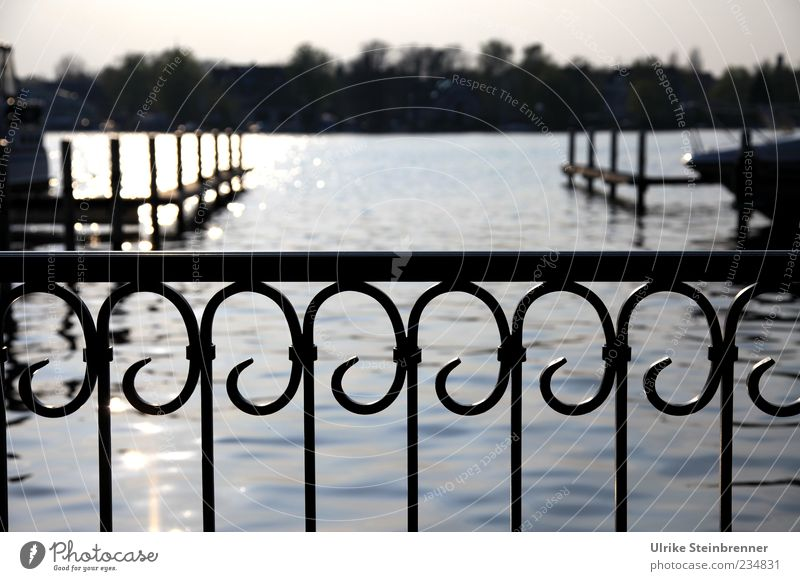 finale Yacht harbour Nature Water Coast Lakeside River bank Berlin Capital city Outskirts Deserted Harbour Terrace Ornament To swing Grating Wrought iron Fence