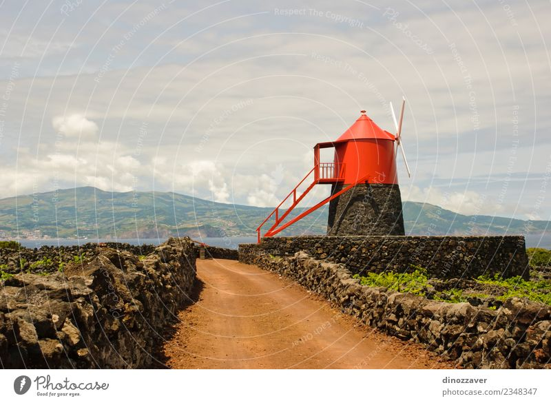 Windmill in vineyards of Pico island, Azores, Vacation & Travel Sightseeing Summer Ocean Island Landscape Plant Sky Clouds Grass Building Architecture Street