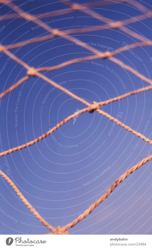 Sky Network Net Interlaced Geometry Reticular Node Bright background