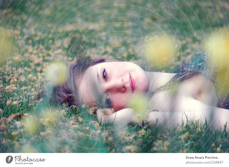 Human being Youth (Young adults) Beautiful Adults Meadow Feminine Grass Happy Style Contentment Elegant Natural Lie Lifestyle 18 - 30 years Young woman