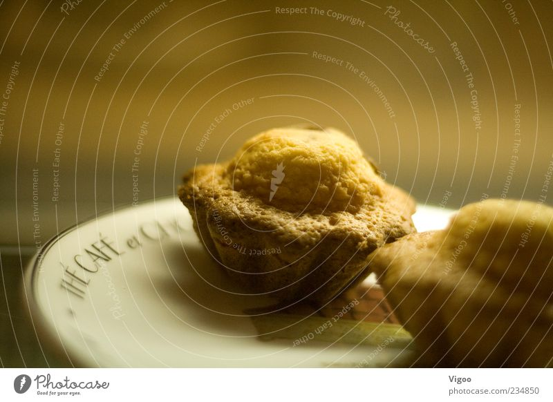 The mini cake Food Dough Baked goods Cake To have a coffee Plate Sweet Brown Yellow Gold Appetite Colour photo Interior shot Close-up Detail Deserted