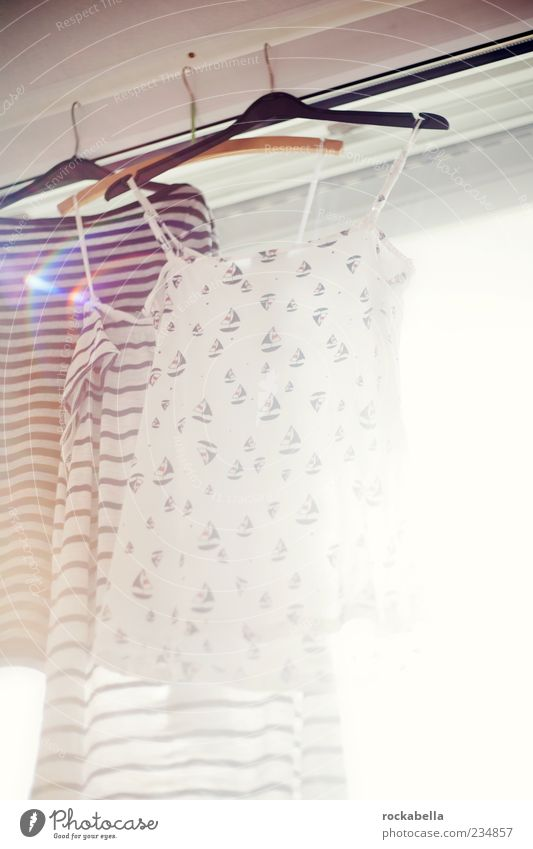 Window Pink Esthetic Clothing T-shirt Clean Dress Top Laundry Ease Window pane Sweater Dry Dazzle Hang up Purity