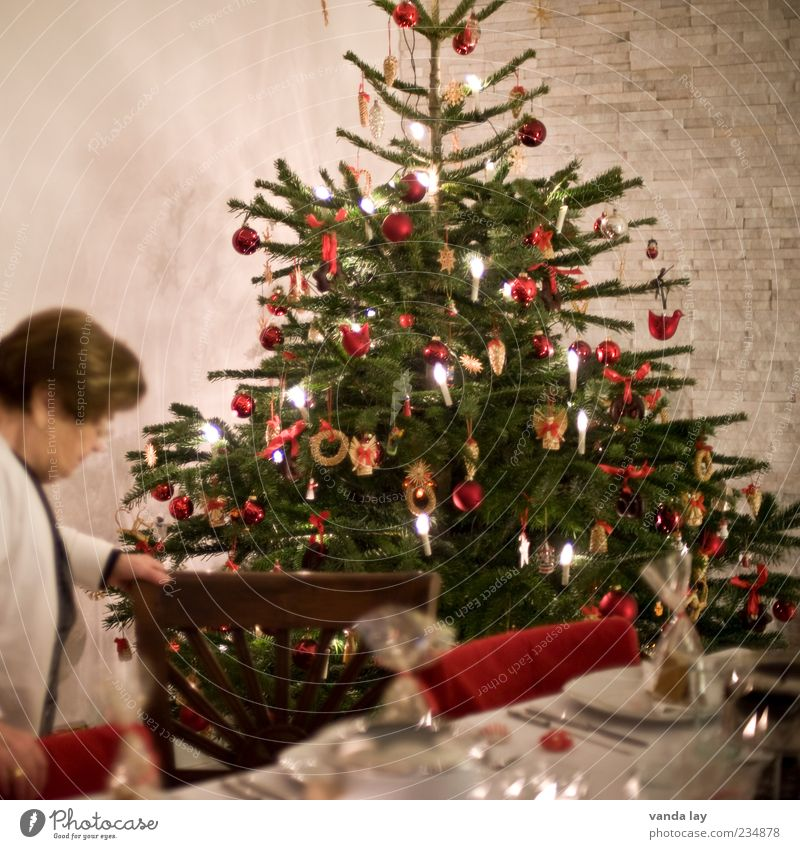 Woman Christmas & Advent Nutrition Style Feasts & Celebrations Flat (apartment) Table Decoration Living or residing Chair Candle Christmas tree Fir tree