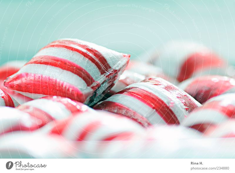 PepperMint II Candy Happiness Bright Sweet Multicoloured Pink White Joie de vivre (Vitality) Striped Colour photo Copy Space top Shallow depth of field
