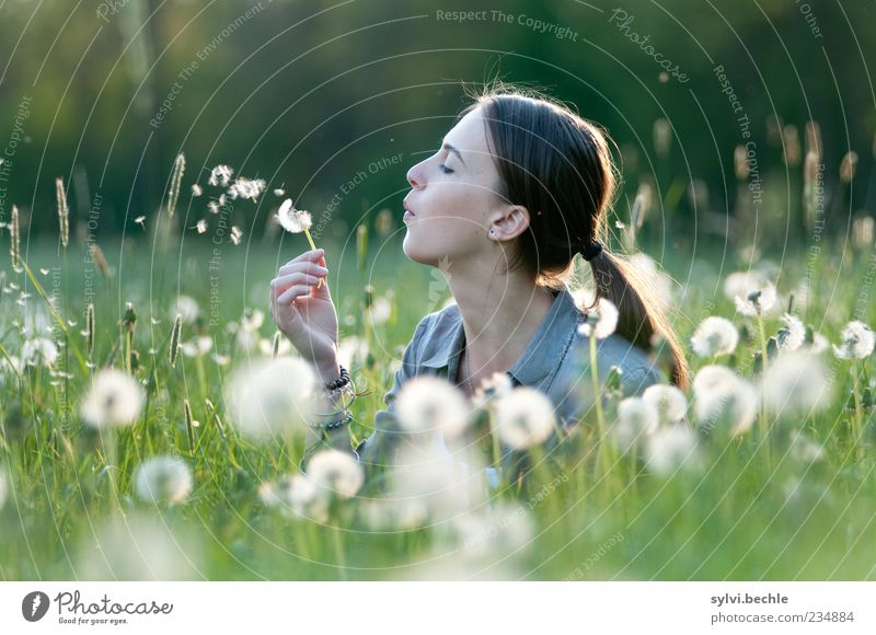 Human being Nature Youth (Young adults) White Green Beautiful Plant Calm Relaxation Environment Life Meadow Feminine Grass Spring Head