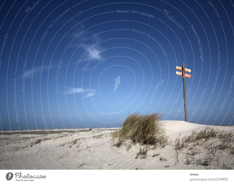 Spiekeroog, feel the sky! Far-off places Beach Ocean Waves Sand Sky Clouds Horizon Wind Grass Hill Signs and labeling Signage Warning sign Blue Dune Beach dune