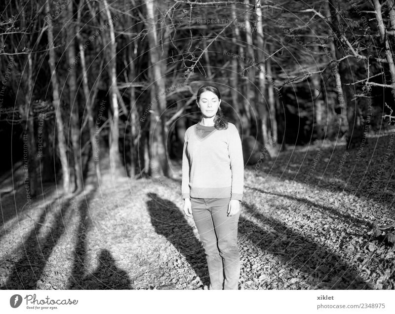 Forest Young woman Youth (Young adults) Body 1 Human being 30 - 45 years Adults Nature Sunlight Tree Wild plant To enjoy Looking Joie de vivre (Vitality) Serene