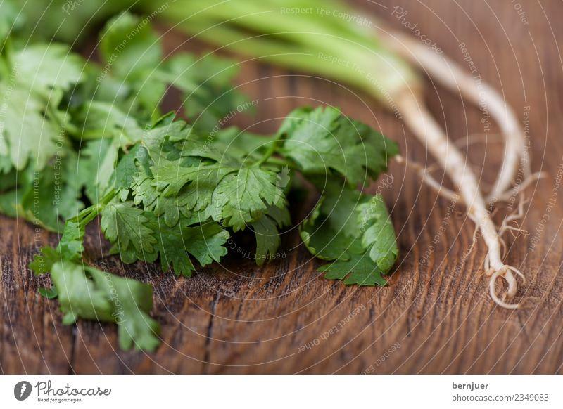 Koriander Food Vegetable Organic produce Vegetarian diet Cheap Good Gewürz Wurzel Coriander Holz Wood asiatisch Food photograph rustikal brett niemand