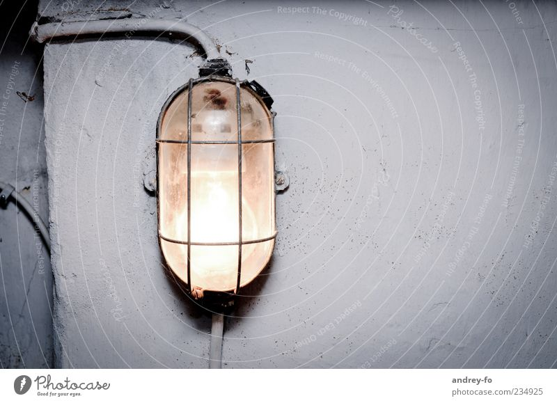 cellar lamp Wall (barrier) Wall (building) Concrete Glass Creepy Gray Cold Lamp Lamplight Cellar Dugout Oval White Damp Cellar wall Cable Electricity