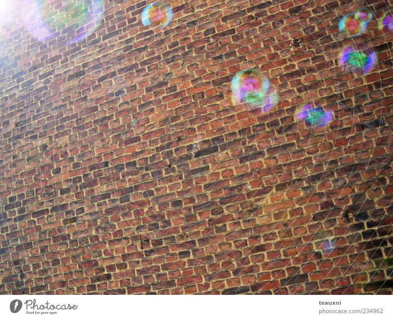 bubbly Wall (barrier) Wall (building) Soap bubble Flying Calm Transience Colour photo Brick wall Glimmer Hover Reflection Copy Space bottom Sunbeam Deserted
