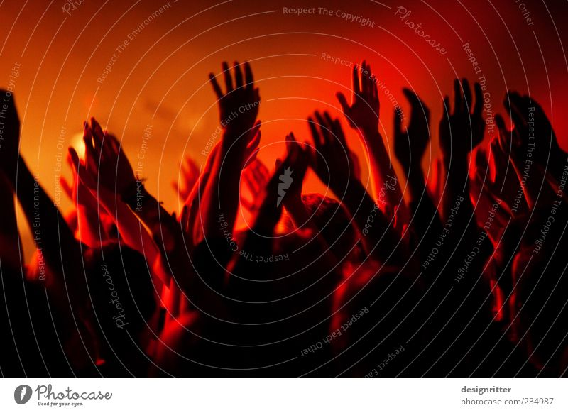 """""""Hosanna"""" Feasts & Celebrations Arm Hand Fingers Crowd of people Concert Fan Dark Together Wild Happy Enthusiasm Euphoria Agreed Sympathy Hope Belief Humble"""