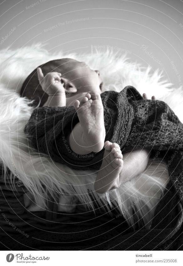 Newborn Baby 1 Human being 0 - 12 months Beginning Uniqueness Life Interior shot Day Yawn Lie Forefinger Sleep Safety (feeling of) Wake up Feet Cute